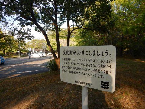 s_DSCN0331