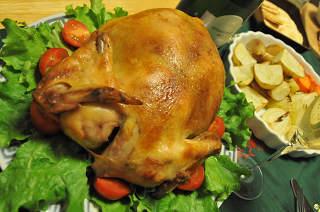2010 pollo